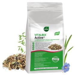 Vitalbix Active +