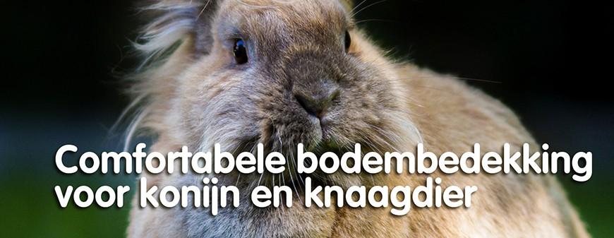 Comfortabele bodembedekking voor konijn en knaagdier