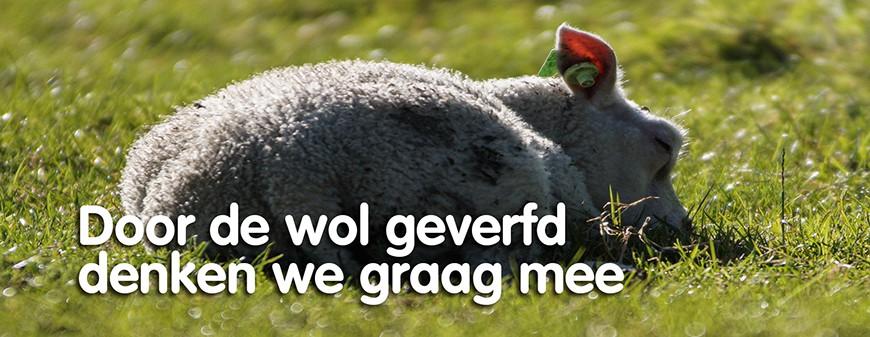 Door de wol geverfd denken we graag mee
